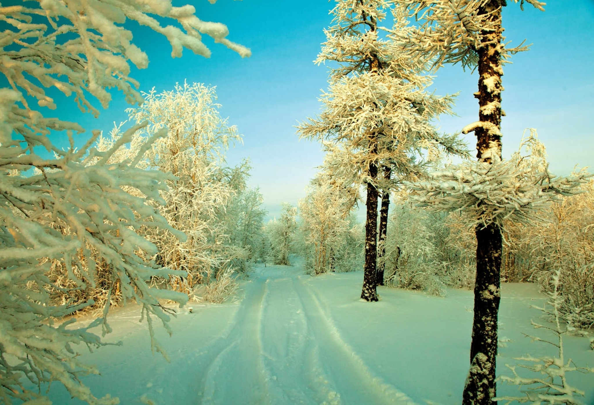 Wallpapers HD invierno y nieve - Parte 12