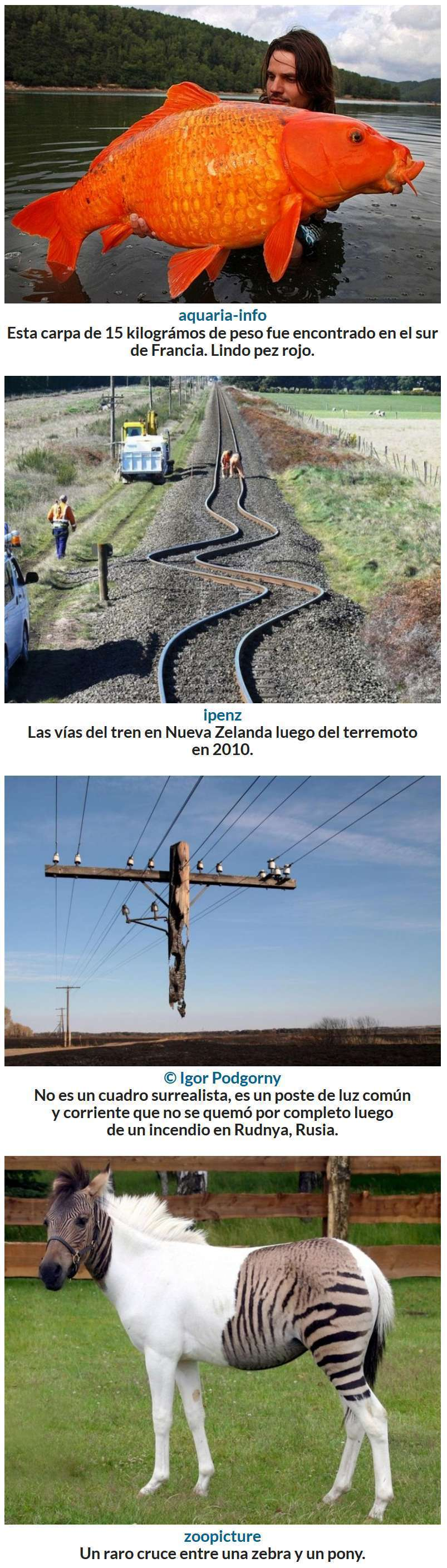 No es photoshop, son fotografias reales, 2 Parte