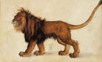 "«The wrath of the lion is the wisdom of God»  William Blake, ""Proverbs of Hell""   (Pintura de Albrecht Dürer, de 1521)"